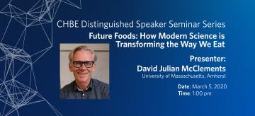 Distinguished Speaker Seminar – Professor David Julian McClements
